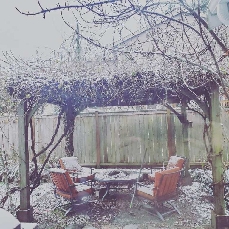 The Fairy Court in Winter: Enjoying the View as I Revise Eastside Hedge Witch